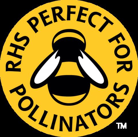 RHS_Bee_FC2_B_RGB.png