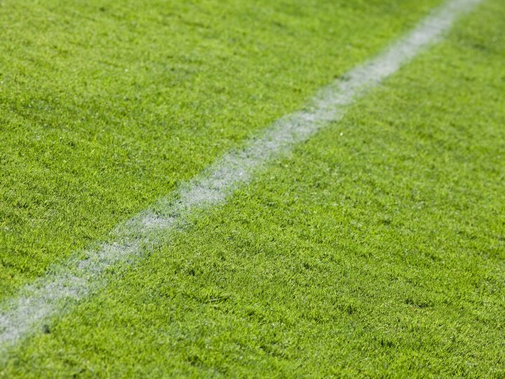 Using grass seed for football pitch overseeding