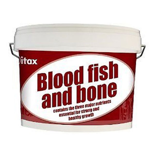 blood-fish-bone