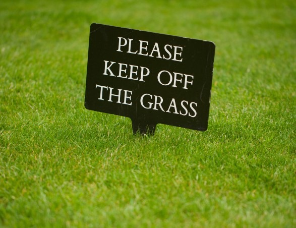 Weather causes excessive lawn growth