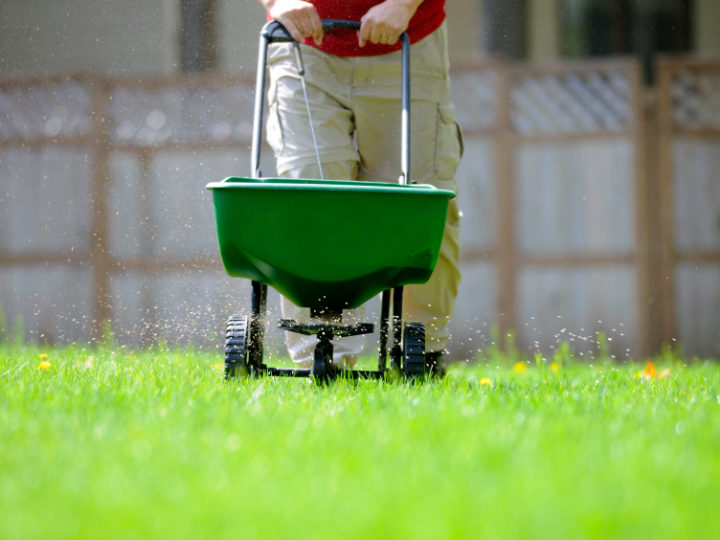 Improve your grass with a good fertiliser