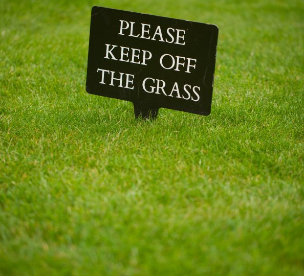 Keep off the grass! Avoid compaction