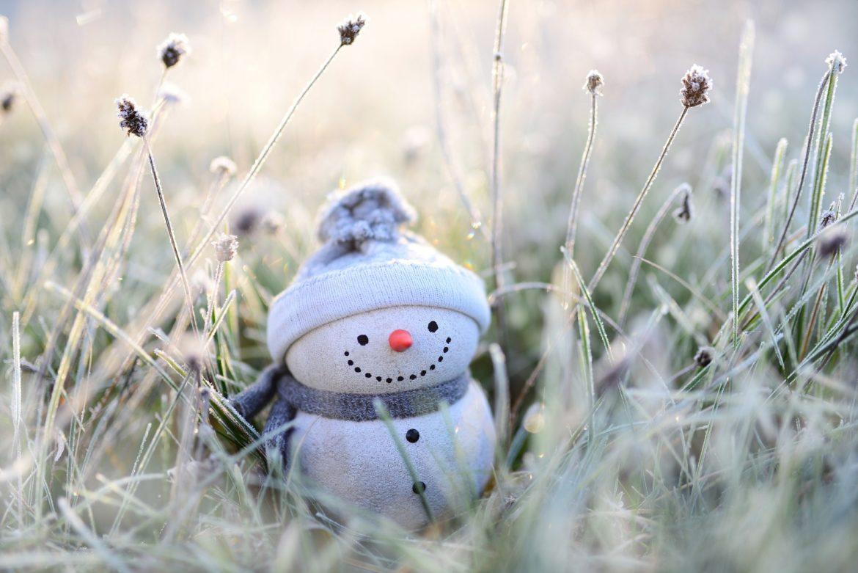 Snowman Lawn