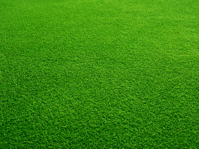 How to Keep your Grass Green - Lawn UK