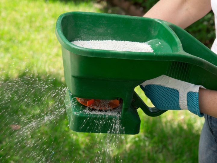 How can Organic Fertilisers benefit your Lawn?