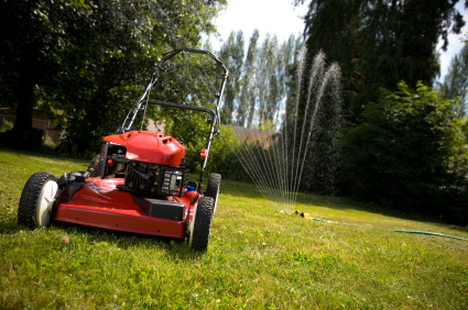 5 Solid Tips on Overseeding Your Lawn
