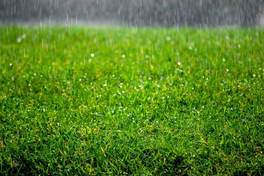Draining The Lawn Lawn Uk