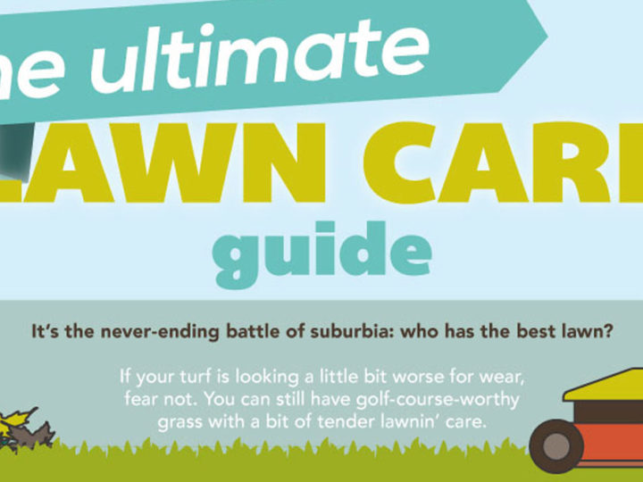 The Ultimate Lawn Infographic