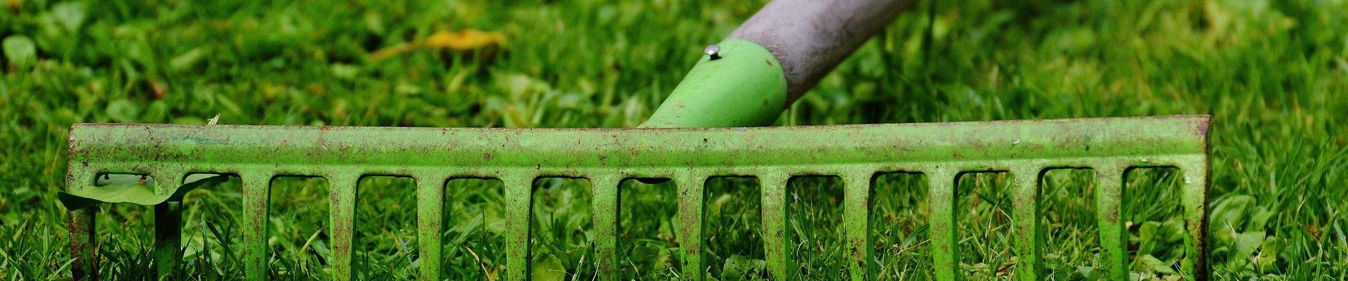 Raking your lawn